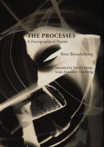 """Front cover of a pamphlet with a background of abstract swirls of dark and light in a sepia tone. Written on the cover is, """"THE PROCESSES: A Factographical Proem   Peter Bouscheljong   translated by David Vichnar, Louis Armand & Tim König"""